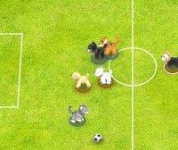 Футбол с животными